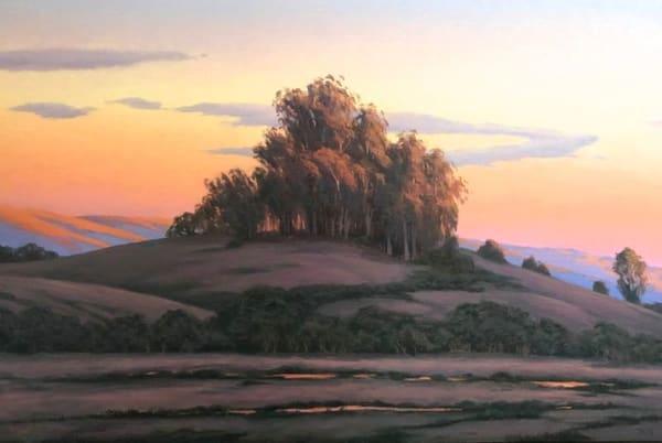 Sonoma County Eucalyptus Sunset Art | Terry Sauve Fine Art
