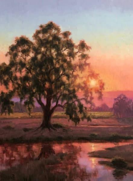 West County Vineyard Oak Sunset  Art | Terry Sauve Fine Art