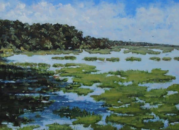 Peaceful Marsh Art | Chris Doyle Fine Arts