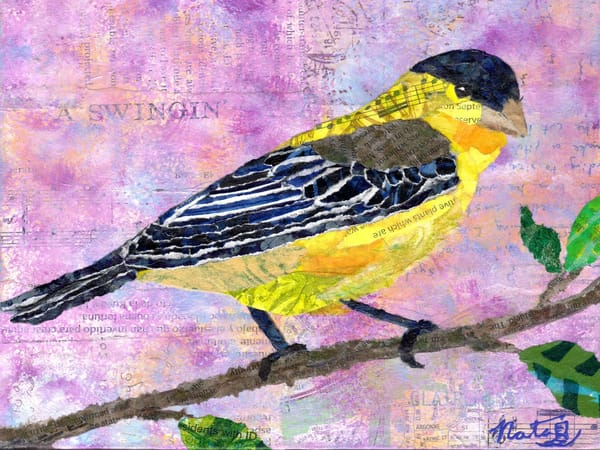 Backyard Birds: Mr. Lesser Goldfinch Art | Poppyfish Studio
