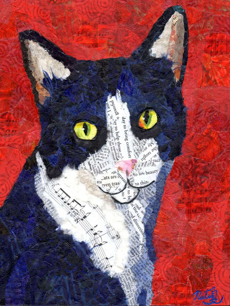Newspaper Cat  Art | Poppyfish Studio