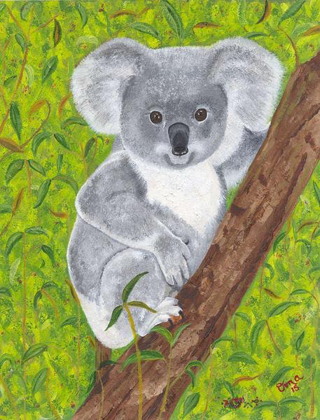 Karin Couture - Koala