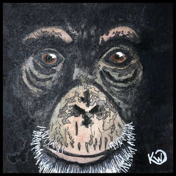 Water Mini: Chimp Face Original | Water+Ink Studios