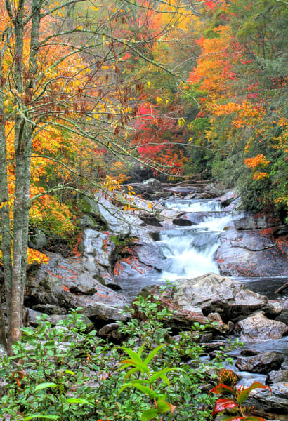 Autumn at Whitewater Falls