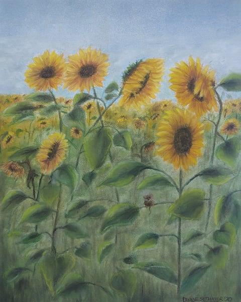 Sunny Sunflowers Art   Cincy Artwork