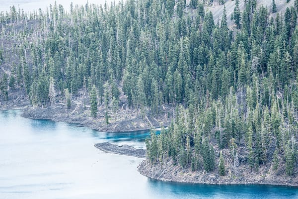 Water Meets Trees -  Rugged shoreline of Crater Lake, Oregon photograph print