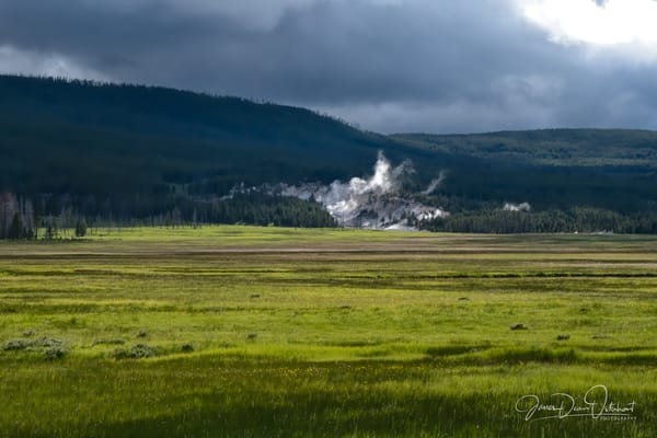 Yellowstone National Park Gallerys