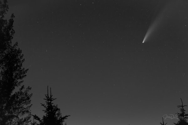 Neowise Comet Black And White 1332 Photography Art | Swan Valley Photo