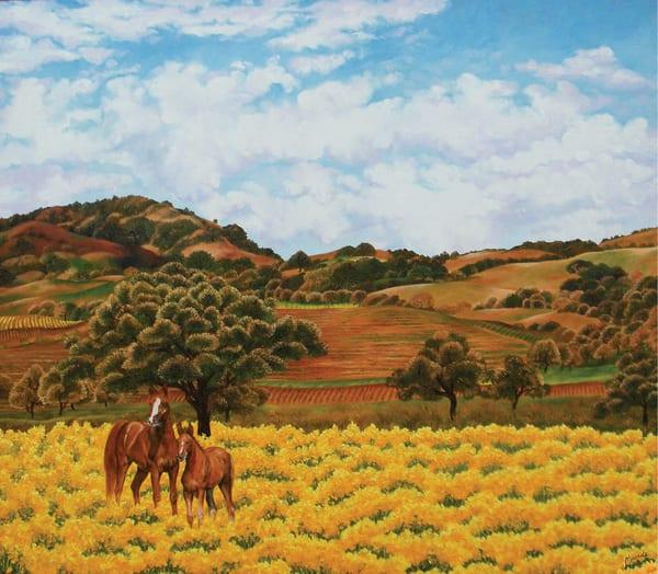 Old Sonoma And Horses   Print Art | Mercedes Fine Art