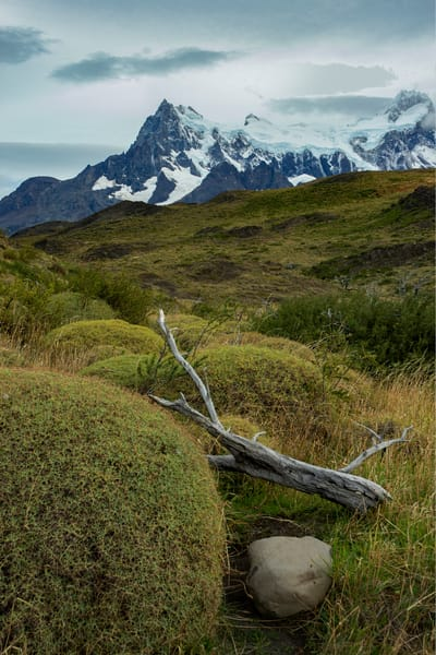 Rock, Limb And Peak Art | karenihirsch