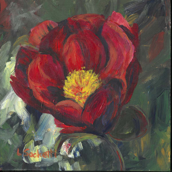 Red Poppy  Art   Linda Sacketti