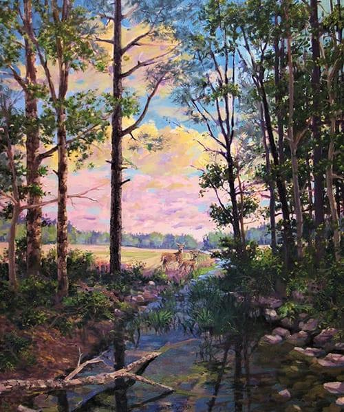 A Deer's Creek