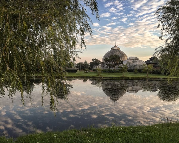 Belle Isle Conservatory Pond Art | Picture Detroit