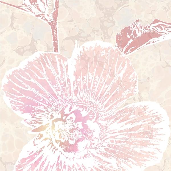 Calarca Hibiscus No. 1 Art | Elena Lipkowski Fine Arts, LLC