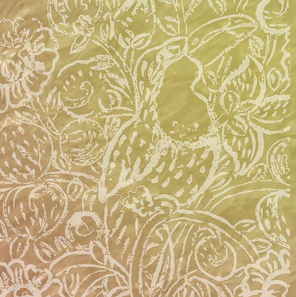 Santa Catalina Toucan No. 1 Art | Elena Lipkowski Fine Arts, LLC