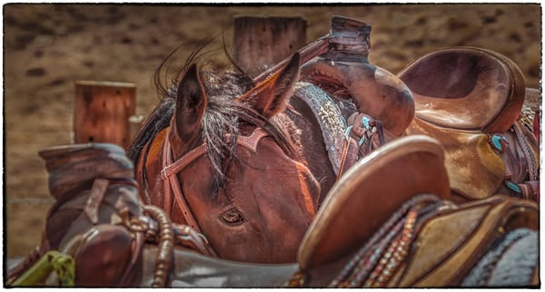 Peek Photography Art | JL Grief Fine Art Photography