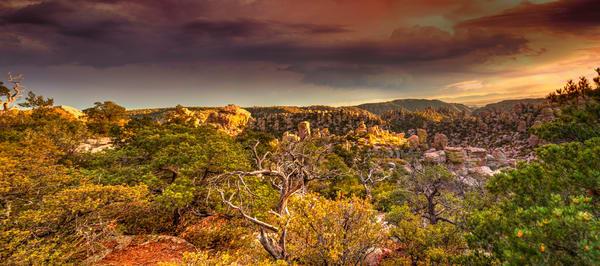 Chiricahua Golden Panorama Photography Art | Lion's Gate Photography