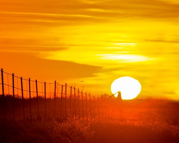 Texas Sunrise Fence Line Art | Jim Livingston Art