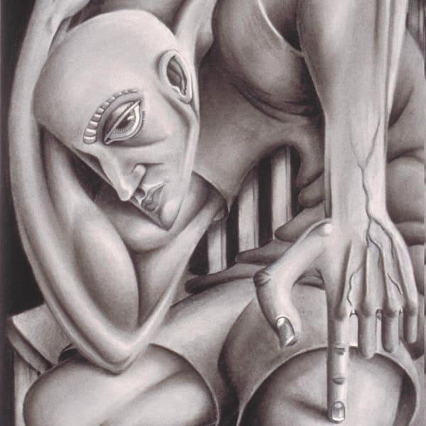 C  Perplexed Art | David Spear