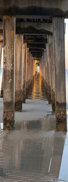 "The view of the  underside  of the  Naples, Florida pier evokes a sense of mystery and holiness to me, hence the name: ""Cathedral"""