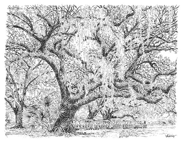 old oak grove (train), city park, new orleans:  fine art prints in elegant pen available for purchase online