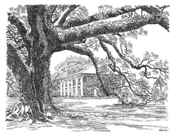 houmas house plantation, darrow, louisiana:  fine art prints in elegant pen available for purchase online