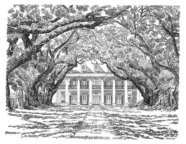 oak alley plantation, vacherie, louisiana:  fine art prints in elegant pen available for purchase online