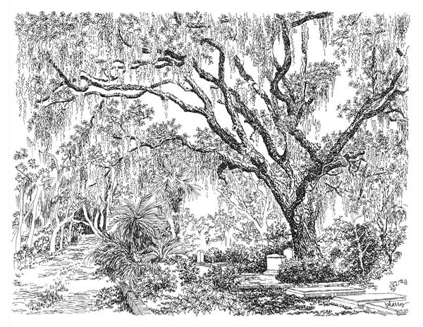 bonaventure cemetery (shadowy path), savannah, georgia:  fine art prints in elegant pen available for purchase online