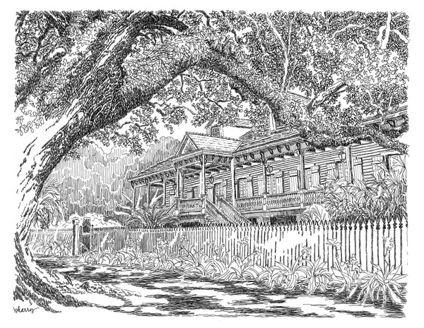 laura plantation, vacherie, louisiana:  fine art prints in elegant pen available for purchase online