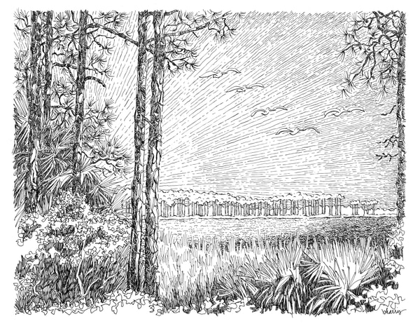 western lake pines, grayton beach (30a), florida:  fine art prints in elegant pen available for purchase online
