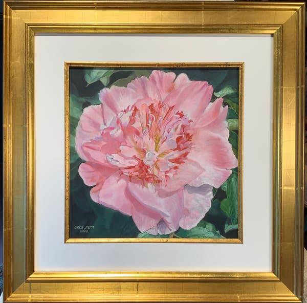 Greg Stett Art Pastels - Peony