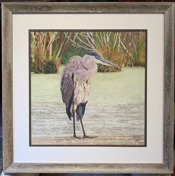 Greg Stett Art Pastels - Heron