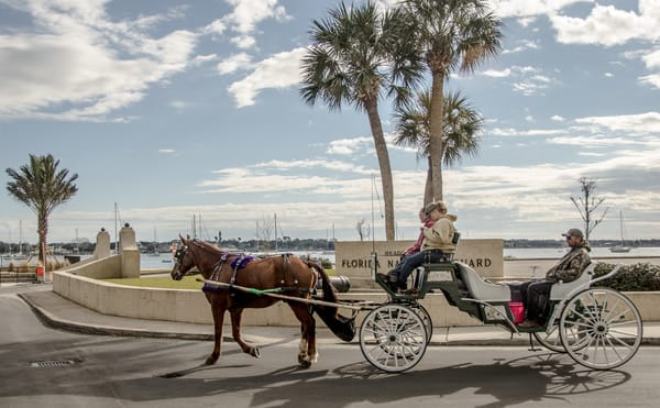 Harbor Drive Carriage Ride Photography Art | martinalpert.com