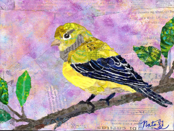 Backyard Birds: Mrs. Lesser Goldfinch Art | Poppyfish Studio