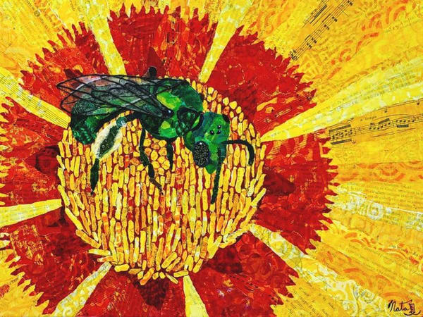 Native Pollinators: Green Bee Art | Poppyfish Studio