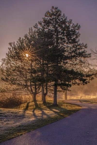 Morning Meander Photography Art | David Lawrence Reade