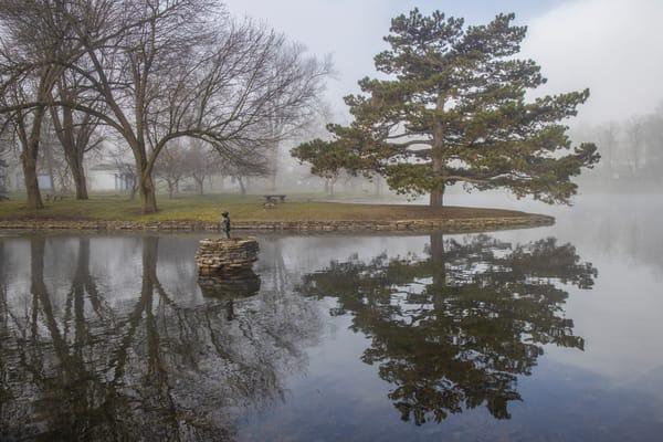 Tranquil Tree Photography Art | David Lawrence Reade