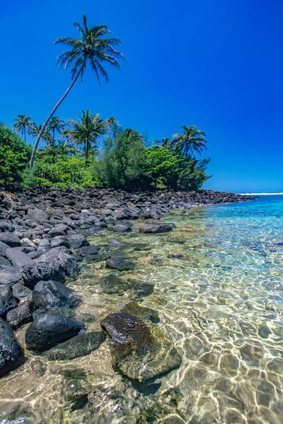 Tropical Paradise Photography Art   David Lawrence Reade