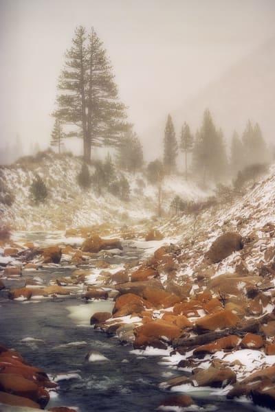 Misty Stream Photography Art | David Lawrence Reade