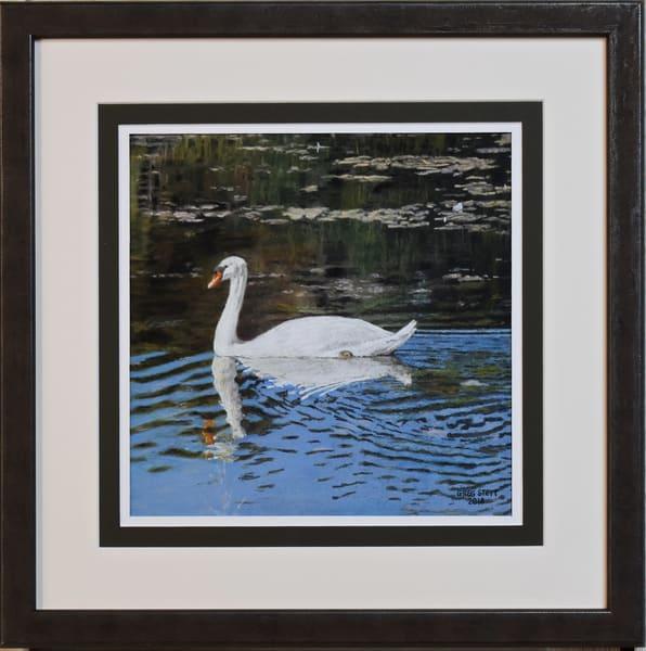 Greg Stett Art Pastels - Swan