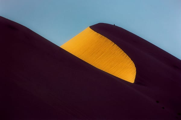 Dune Shadow Photography Art | David Lawrence Reade