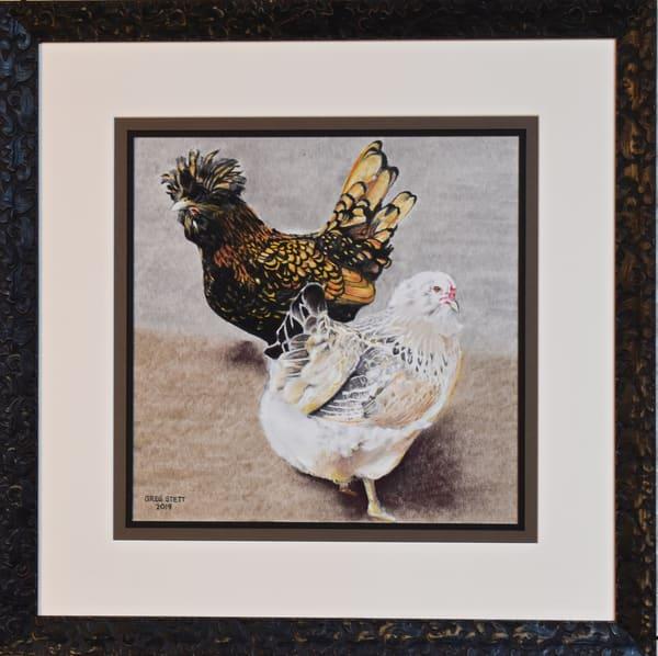 Greg Stett Art Pastels - Chickens