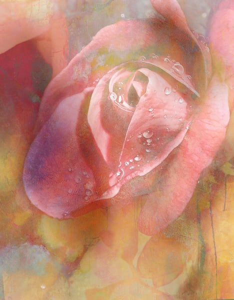 Morning Dew Art | Cincy Artwork