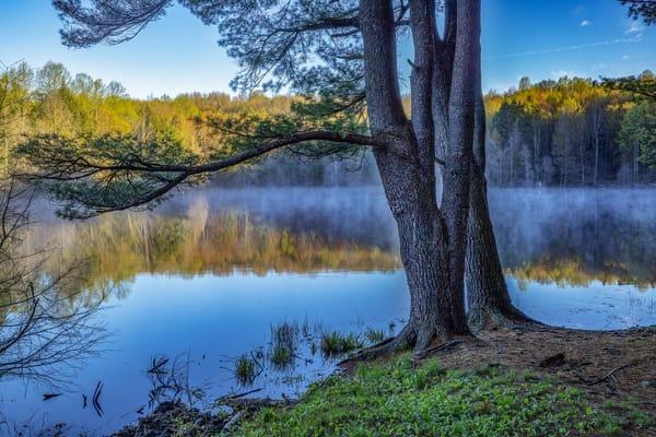 Mistical Morning Photography Art | David Lawrence Reade