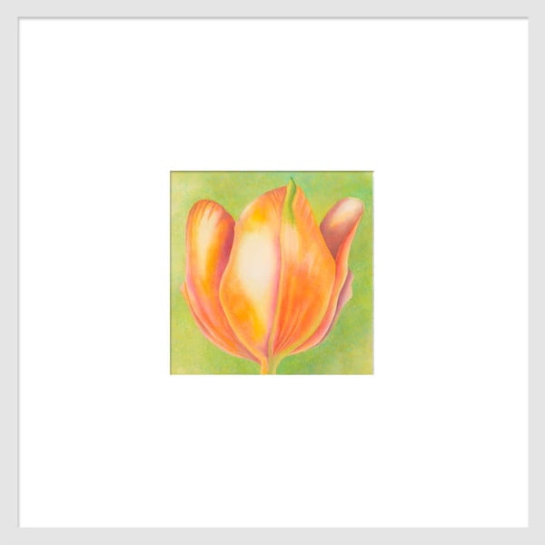 Small Wonders - Orange Tulip Series #1 is a watercolor with colored pencil mixed media artwork. Options include matting and framing.