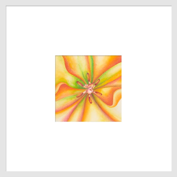 Small Wonders - Orange Tulip Series #2 is a watercolor with colored pencil mixed media artwork. Options include matting and framing.