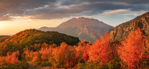 Squaw Peak Maple Panorama