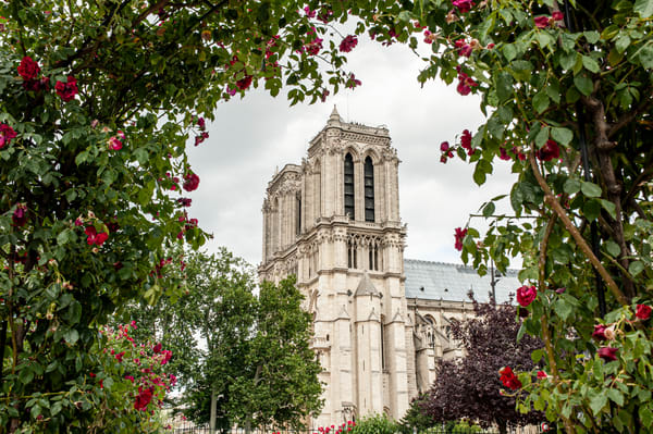 Notre Dame Photography Art | Kim Bova Photography