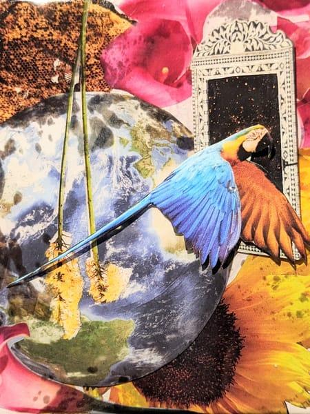 Birds Of A Feather: Terra Art | Andi Garbarino Fine Art
