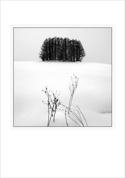 Individual Postcards | Roy Fraser Photographer